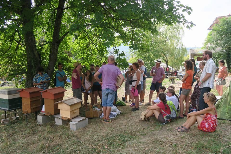 Visite-ruches