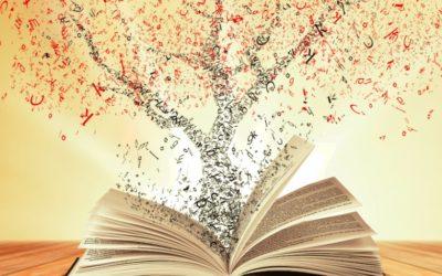Présentons et fêtons la bibliothèque de RISOMES – Vendredi 13 mars (19h)