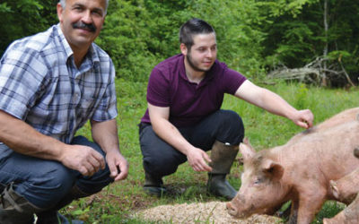 Portrait de producteurs de la Tourniquette – La ferme des 3 frênes
