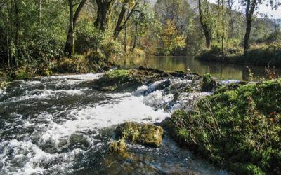 [Publication] L'eau aux bords du politique – Reconquête des communs